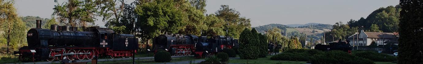 Direcția de cultură Caraș-Severin