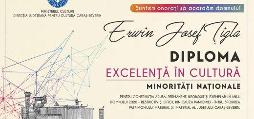 Diploma Ervin Tigla